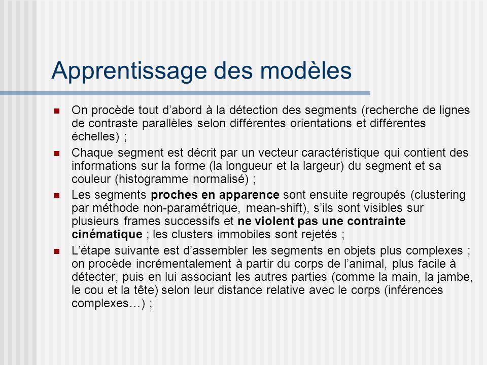 Apprentissage des modèles On procède tout dabord à la détection des segments (recherche de lignes de contraste parallèles selon différentes orientatio
