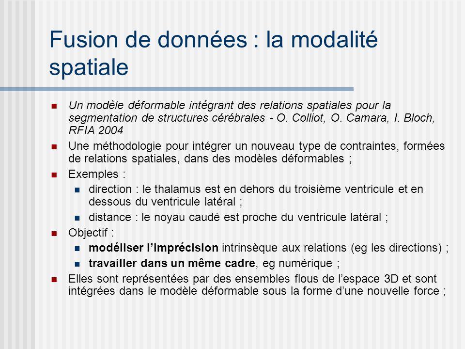 Fusion de données : la modalité spatiale Un modèle déformable intégrant des relations spatiales pour la segmentation de structures cérébrales - O. Col