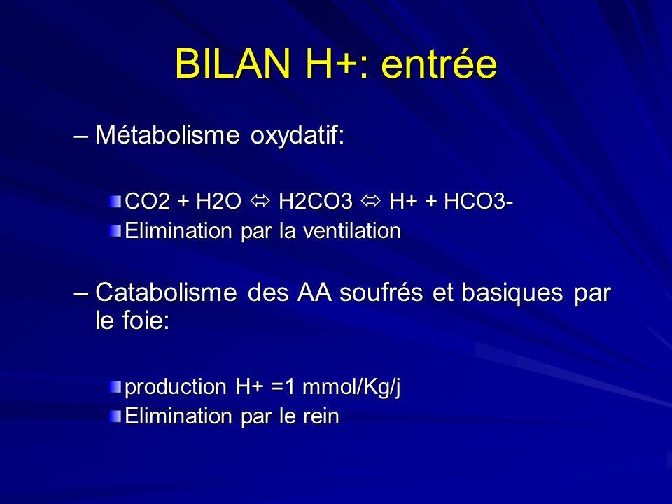 BILAN H+: entrée –Métabolisme oxydatif: CO2 + H2O H2CO3 H+ + HCO3- Elimination par la ventilation –Catabolisme des AA soufrés et basiques par le foie: