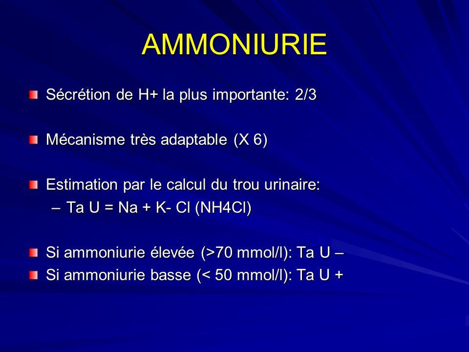 AMMONIURIE Sécrétion de H+ la plus importante: 2/3 Mécanisme très adaptable (X 6) Estimation par le calcul du trou urinaire: –Ta U = Na + K- Cl (NH4Cl