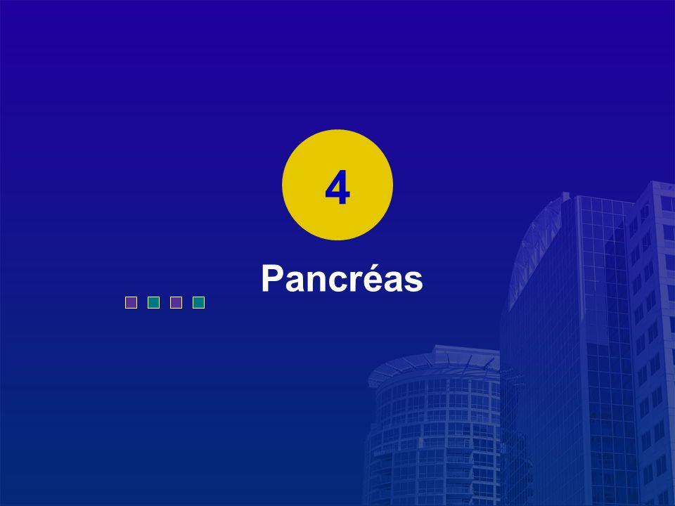 La Lettre du Cancérologue Pancréas 4