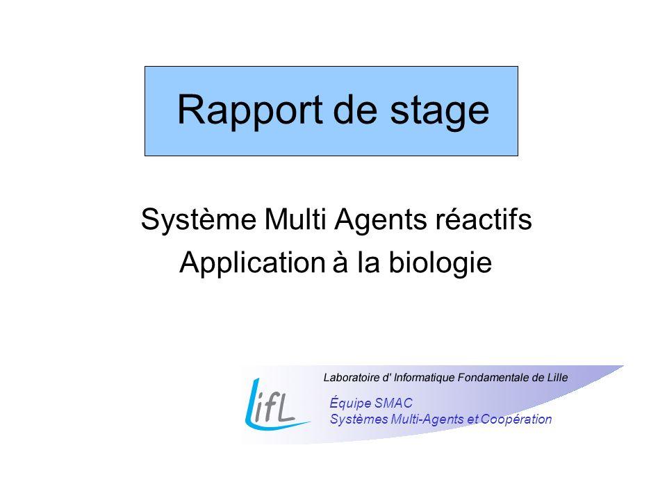 Système Multi Agents réactifs Application à la biologie Équipe SMAC Systèmes Multi-Agents et Coopération Rapport de stage