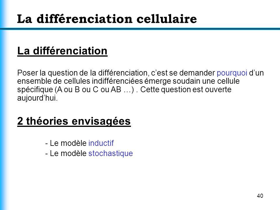 40 La différenciation cellulaire La différenciation Poser la question de la différenciation, cest se demander pourquoi dun ensemble de cellules indiff