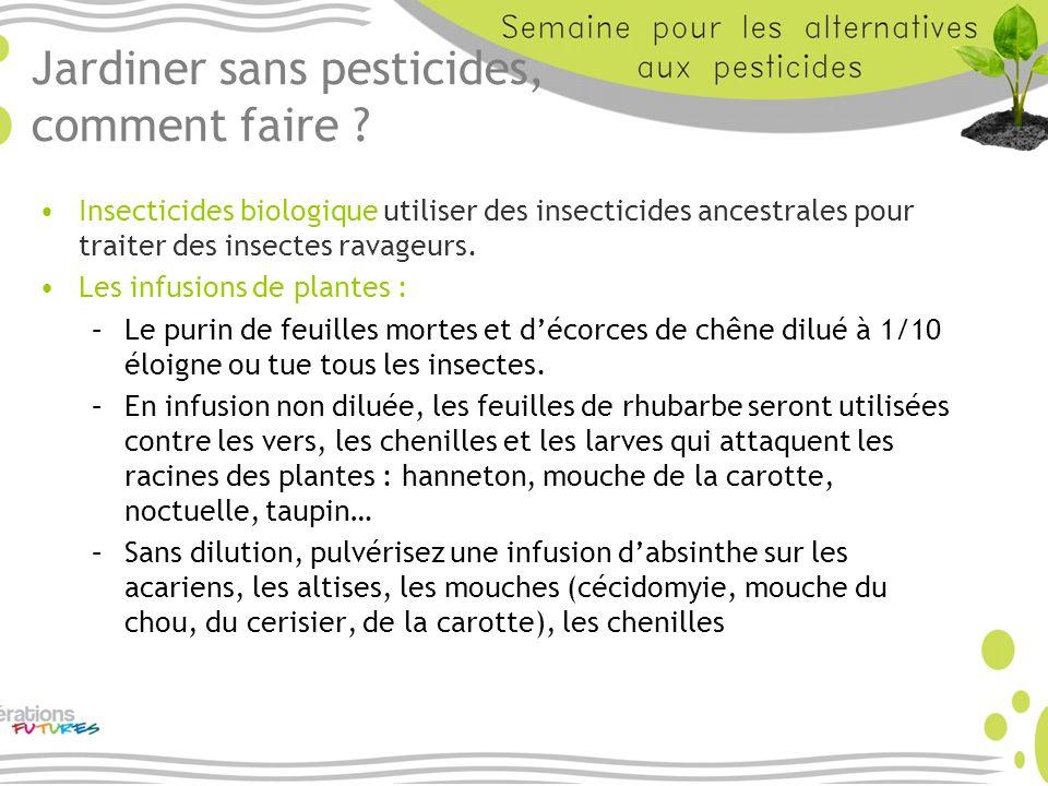 Jardiner sans pesticides, comment faire ? Insecticides biologique utiliser des insecticides ancestrales pour traiter des insectes ravageurs. Les infus