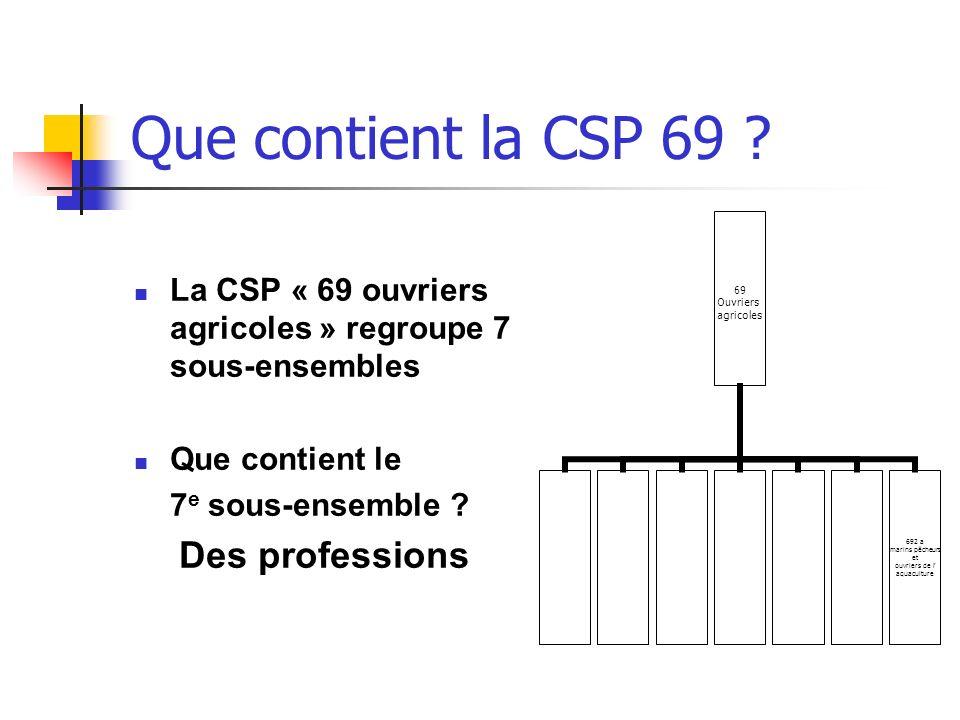 Que contient la CSP 69 ? La CSP « 69 ouvriers agricoles » regroupe 7 sous-ensembles Que contient le 7 e sous-ensemble ? Des professions 69 Ouvriers ag