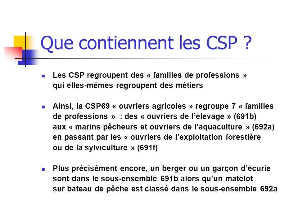 Que contiennent les CSP ? Les CSP regroupent des « familles de professions » qui elles-mêmes regroupent des métiers Ainsi, la CSP69 « ouvriers agricol