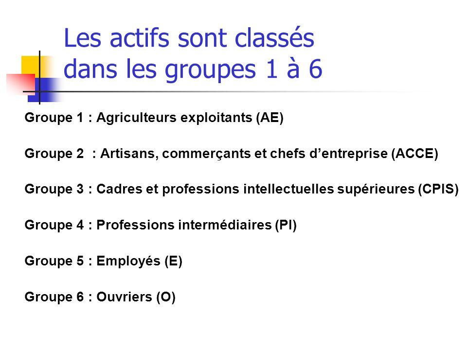 Les actifs sont classés dans les groupes 1 à 6 Groupe 1 : Agriculteurs exploitants (AE) Groupe 2 : Artisans, commerçants et chefs dentreprise (ACCE) G