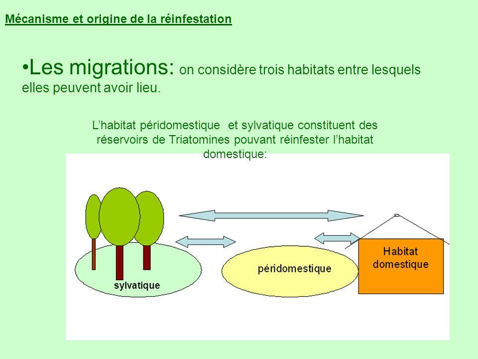 Mécanisme et origine de la réinfestation Lhabitat péridomestique et sylvatique constituent des réservoirs de Triatomines pouvant réinfester lhabitat d