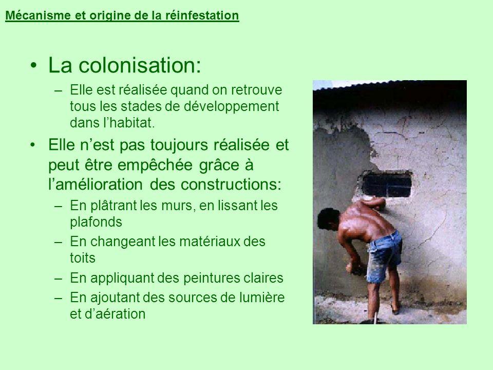 Mécanisme et origine de la réinfestation La colonisation: –Elle est réalisée quand on retrouve tous les stades de développement dans lhabitat. Elle ne