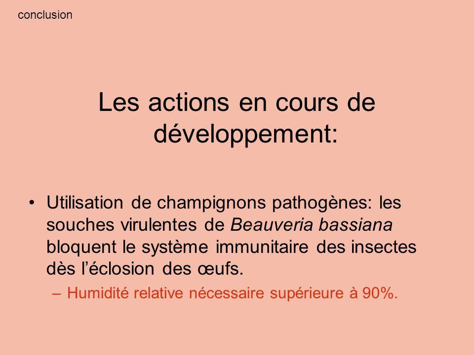 conclusion Les actions en cours de développement: Utilisation de champignons pathogènes: les souches virulentes de Beauveria bassiana bloquent le syst