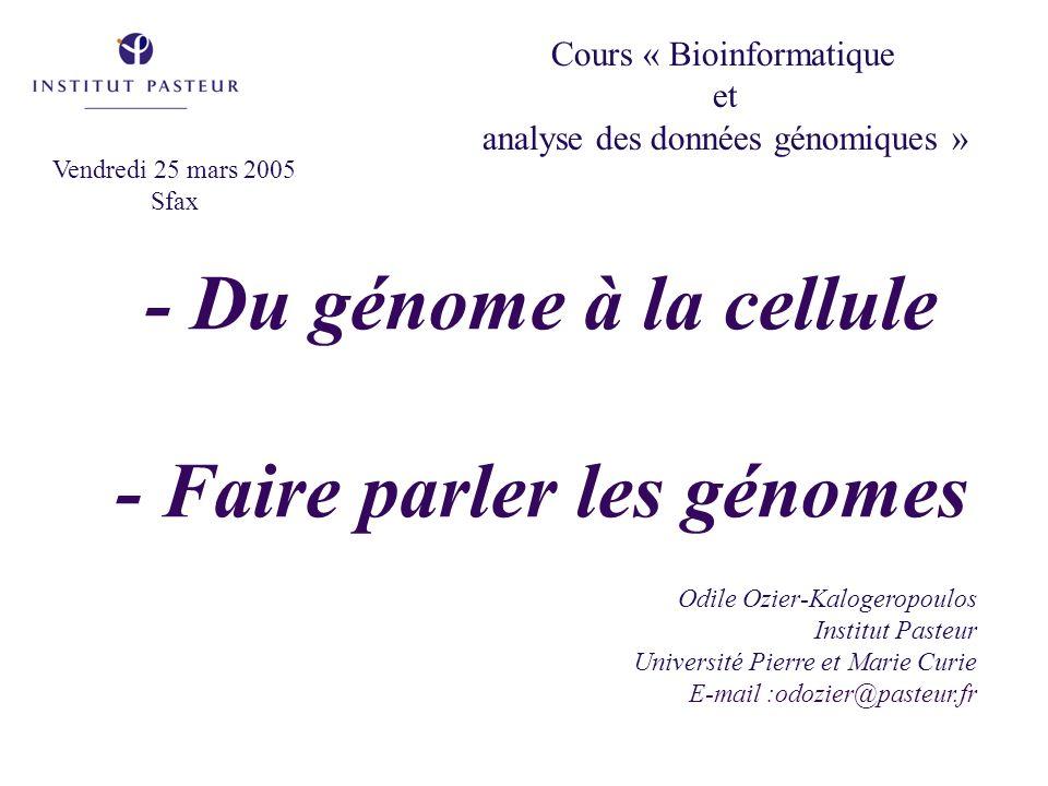 - Du génome à la cellule - Faire parler les génomes Odile Ozier-Kalogeropoulos Institut Pasteur Université Pierre et Marie Curie E-mail :odozier@paste