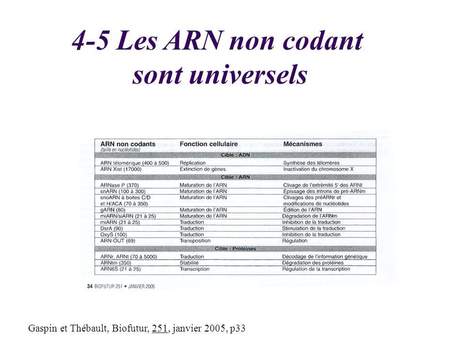 Gaspin et Thébault, Biofutur, 251, janvier 2005, p33 4-5 Les ARN non codant sont universels
