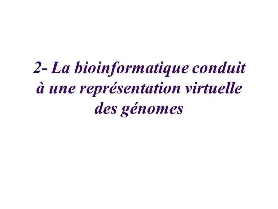 2- La bioinformatique conduit à une représentation virtuelle des génomes