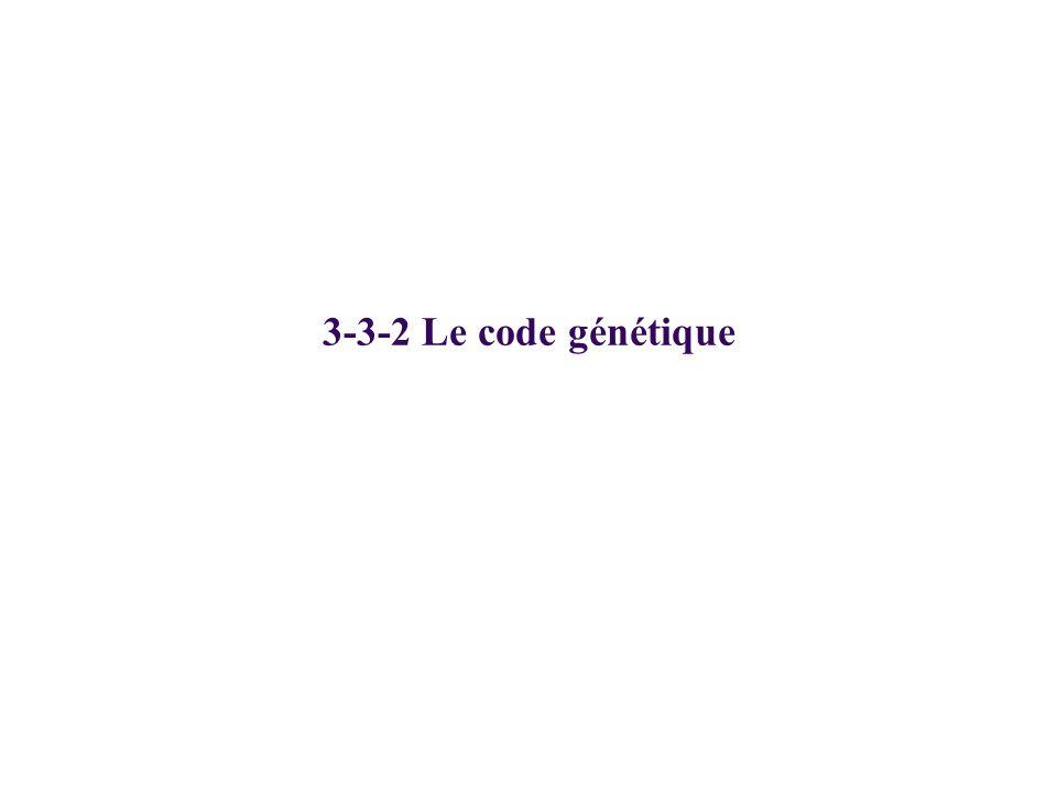 3-3-2 Le code génétique