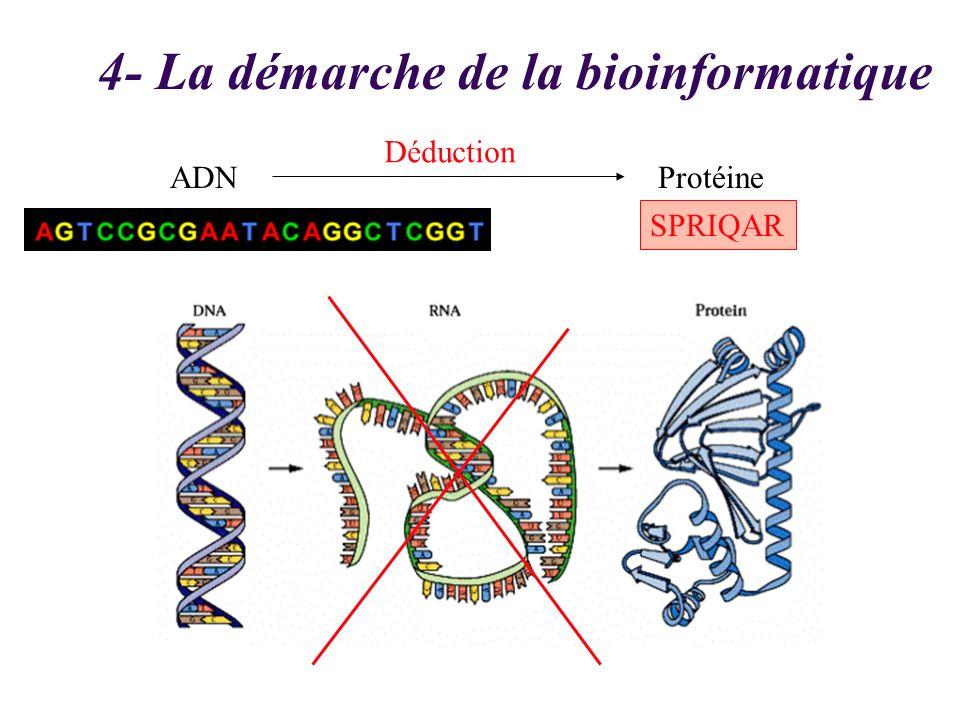 ADN 4- La démarche de la bioinformatique Protéine Déduction SPRIQAR