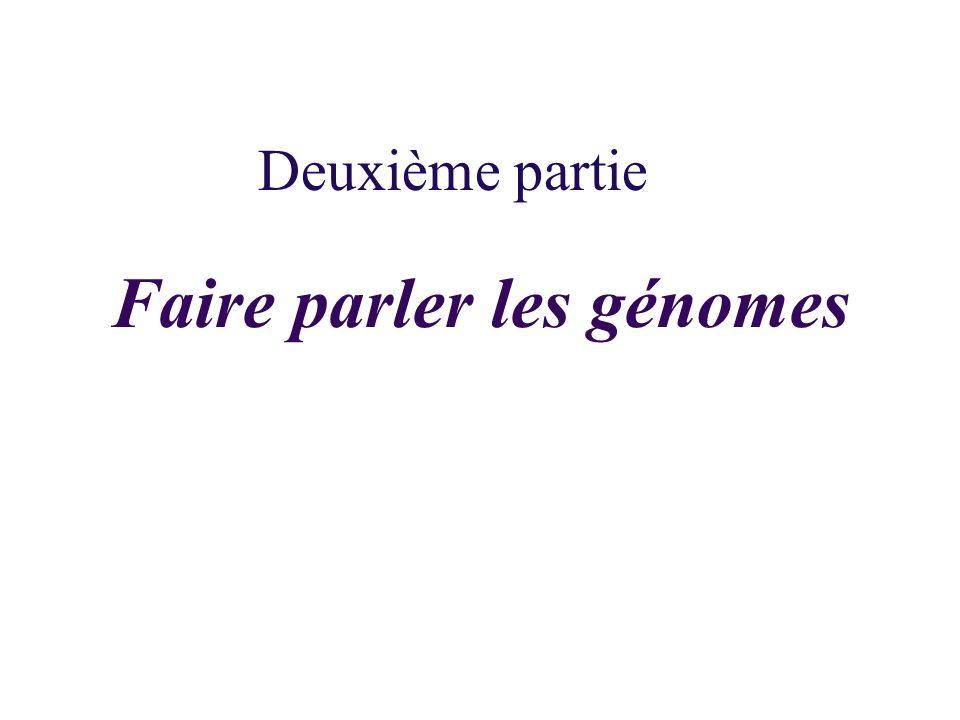 Faire parler les génomes Deuxième partie