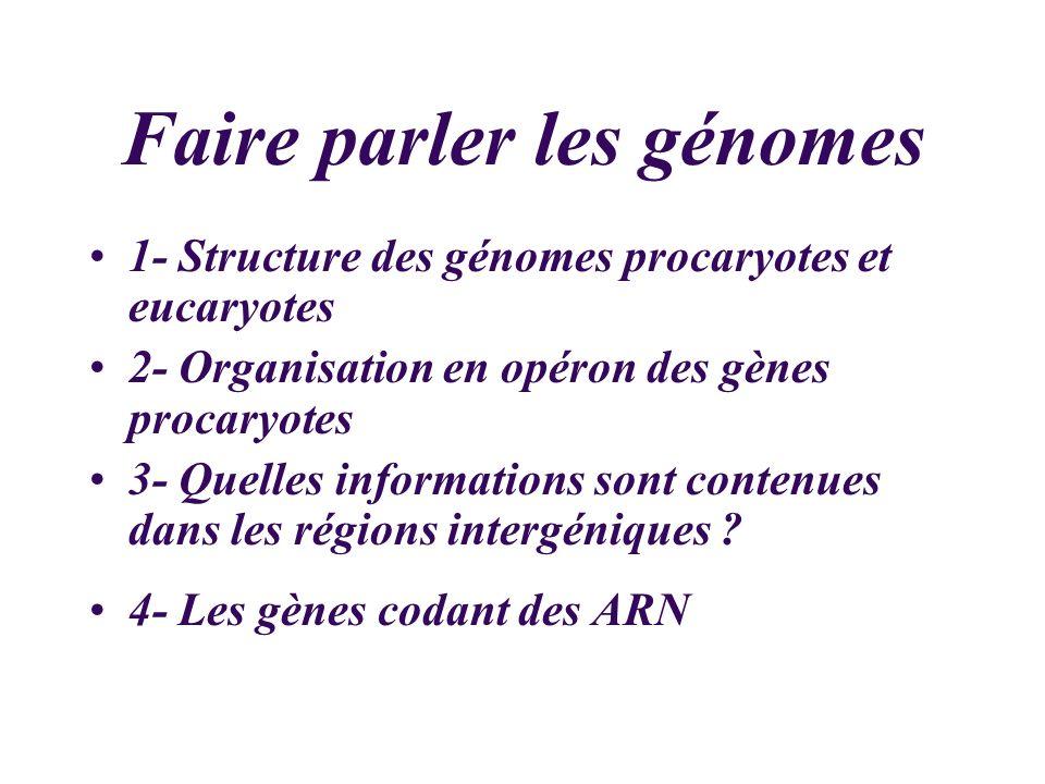 Faire parler les génomes 1- Structure des génomes procaryotes et eucaryotes 2- Organisation en opéron des gènes procaryotes 3- Quelles informations so
