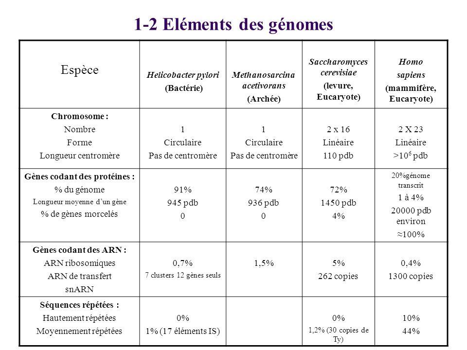 1-2 Eléments des génomes Espèce Helicobacter pylori (Bactérie) Methanosarcina acetivorans (Archée) Saccharomyces cerevisiae (levure, Eucaryote) Homo s