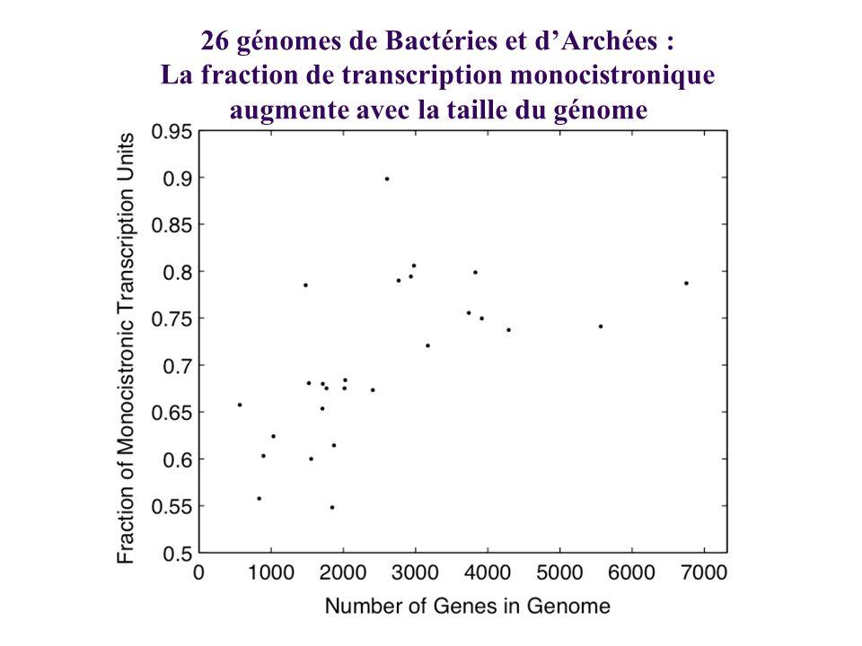 26 génomes de Bactéries et dArchées : La fraction de transcription monocistronique augmente avec la taille du génome