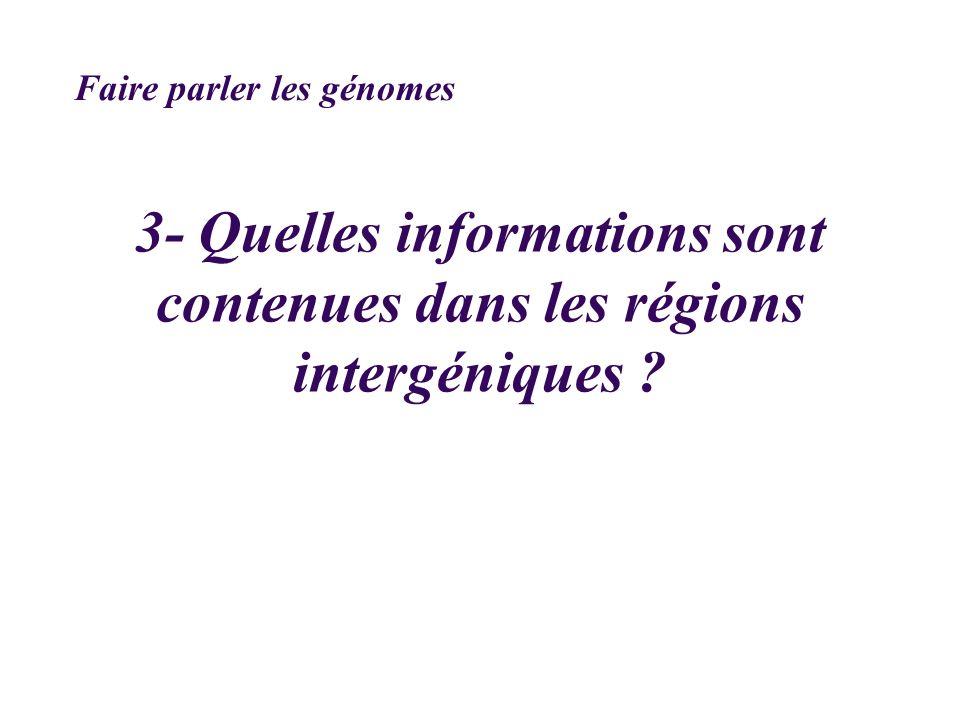 3- Quelles informations sont contenues dans les régions intergéniques ? Faire parler les génomes