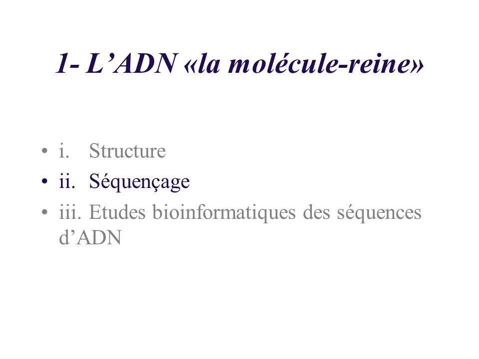1- LADN «la molécule-reine» i.Structure ii.Séquençage iii.Etudes bioinformatiques des séquences dADN