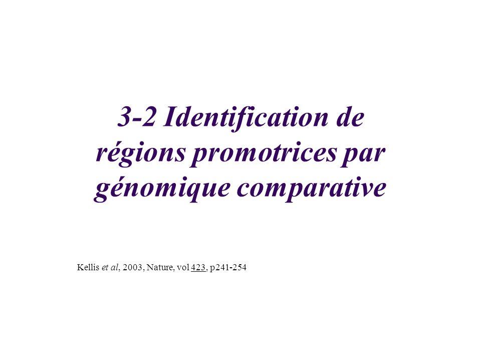 3-2 Identification de régions promotrices par génomique comparative Kellis et al, 2003, Nature, vol 423, p241-254
