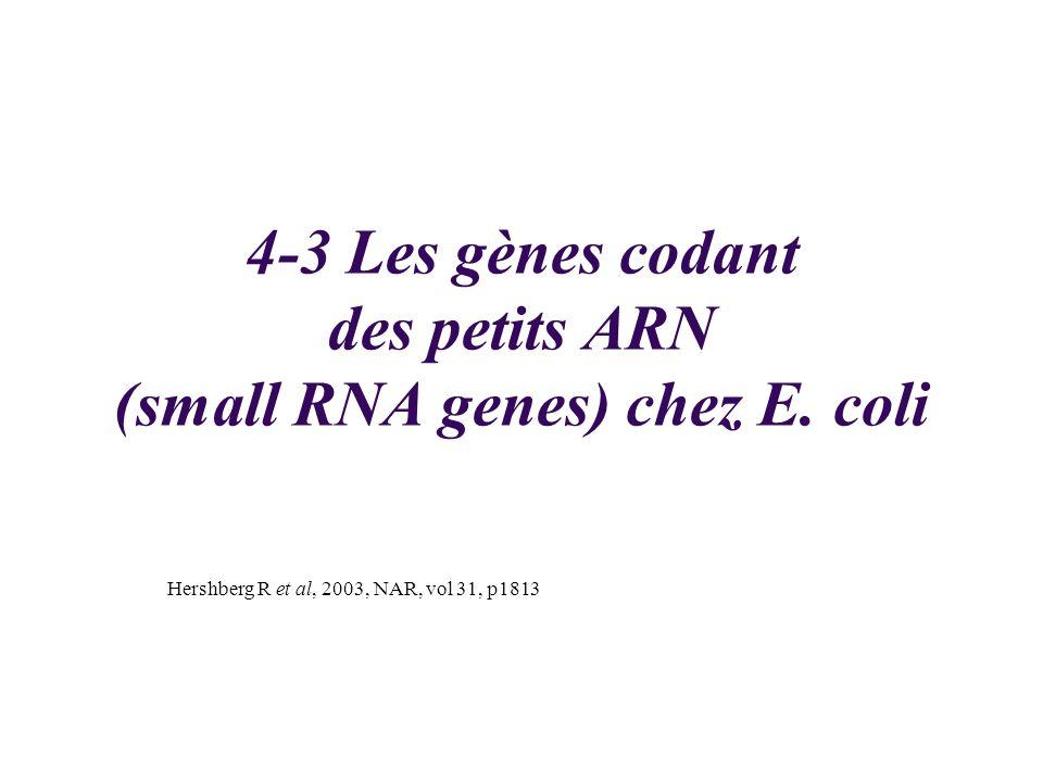 4-3 Les gènes codant des petits ARN (small RNA genes) chez E. coli Hershberg R et al, 2003, NAR, vol 31, p1813