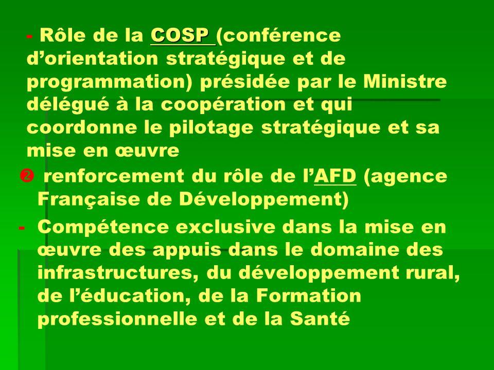 -COSP - Rôle de la COSP (conférence dorientation stratégique et de programmation) présidée par le Ministre délégué à la coopération et qui coordonne l