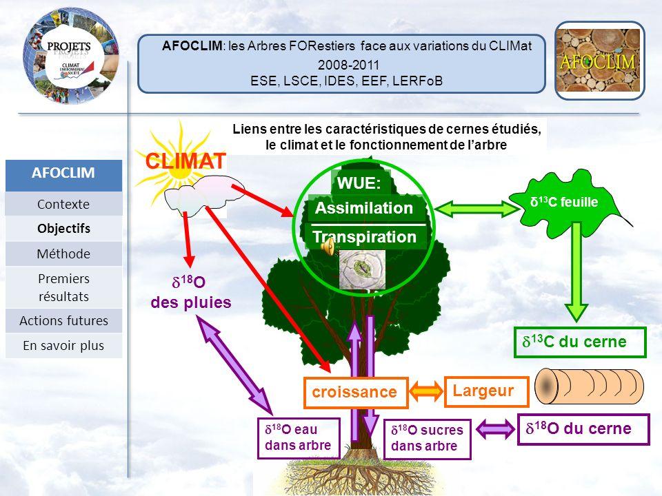 Les cernes des arbres : une archive de lhistoire de larbre et du climat largeur, 13 C, 18 O Approche paléoclimatique Reconstruction du climat passé (L