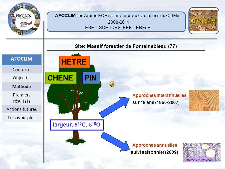 Liens entre les caractéristiques de cernes étudiés, le climat et le fonctionnement de larbre δ 13 C feuille WUE: Transpiration Assimilation 13 C du ce