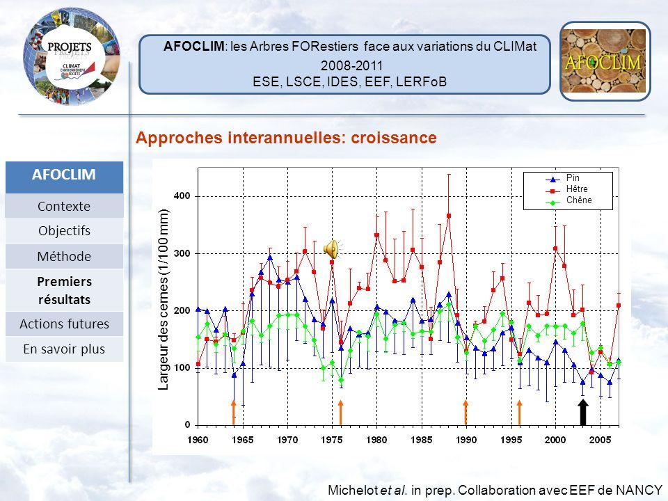 largeur, 13 C, 18 O Approches interannuelles sur 48 ans (1960-2007) Approches annuelles suivi saisonnier (2009) Photo A Michelot 2009 Site: Massif for