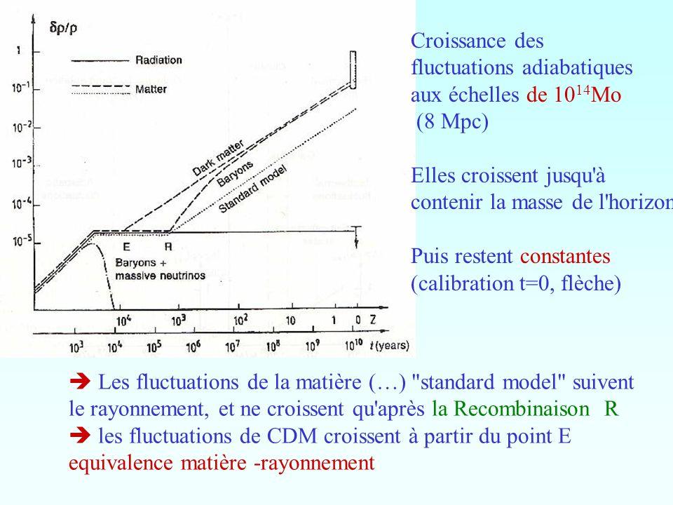 Croissance des fluctuations adiabatiques aux échelles de 10 14 Mo (8 Mpc) Elles croissent jusqu'à contenir la masse de l'horizon Puis restent constant