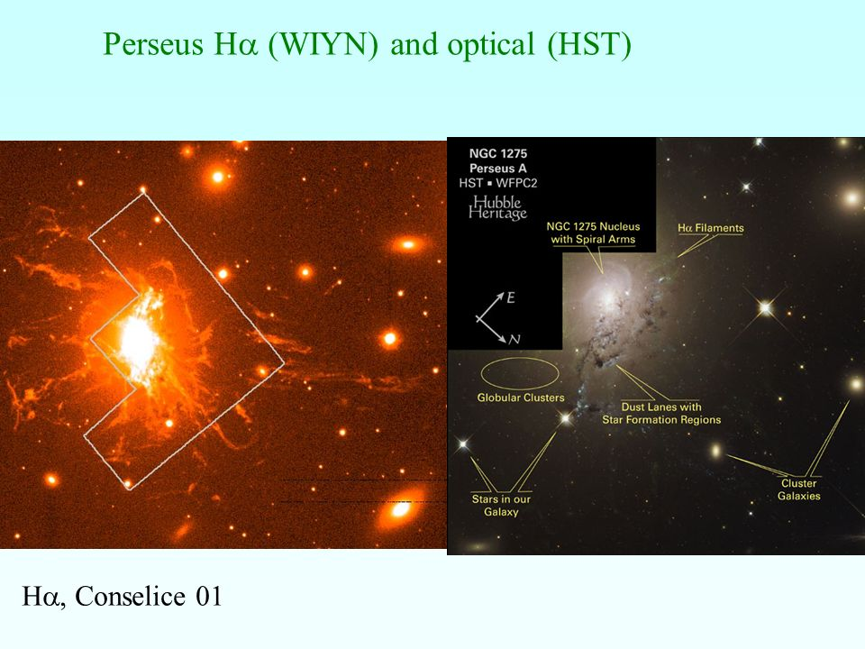 Perseus H (WIYN) and optical (HST) H, Conselice 01