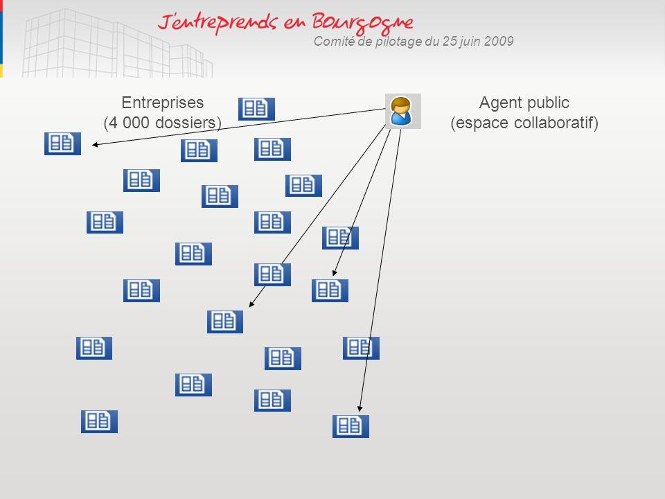 Agent public (espace collaboratif) Entreprises (4 000 dossiers)