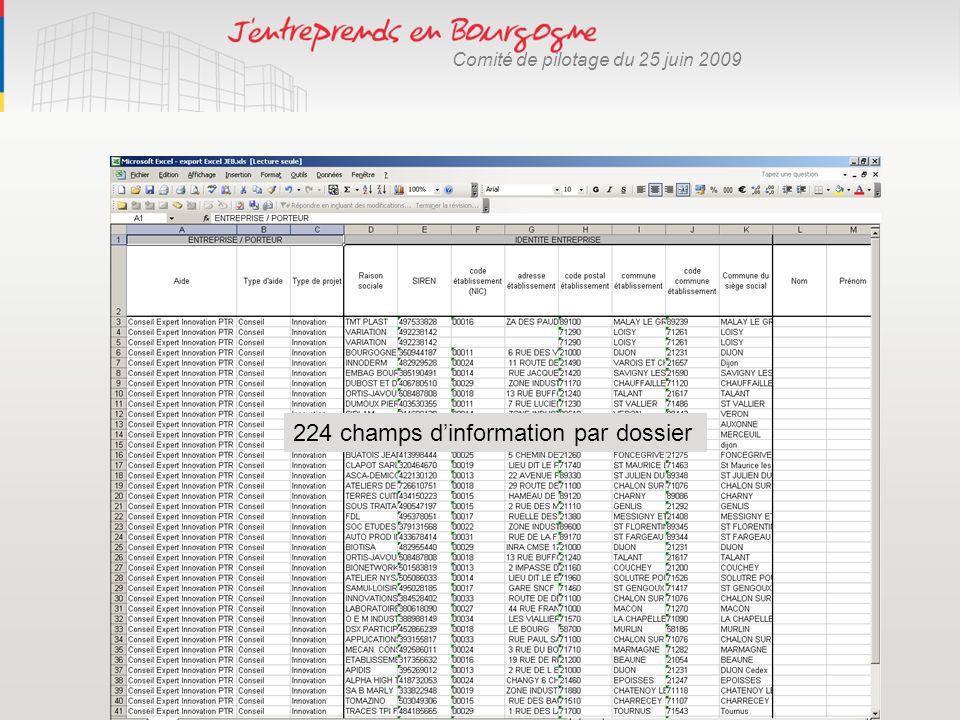 Comité de pilotage du 25 juin 2009 224 champs dinformation par dossier