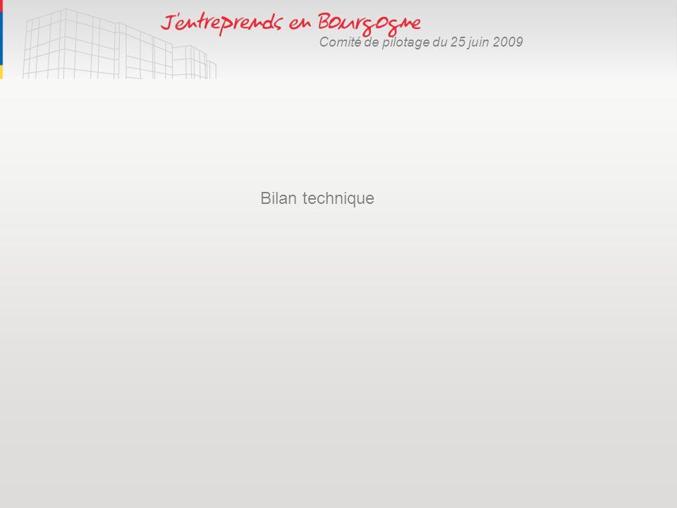Comité de pilotage du 25 juin 2009 Bilan technique