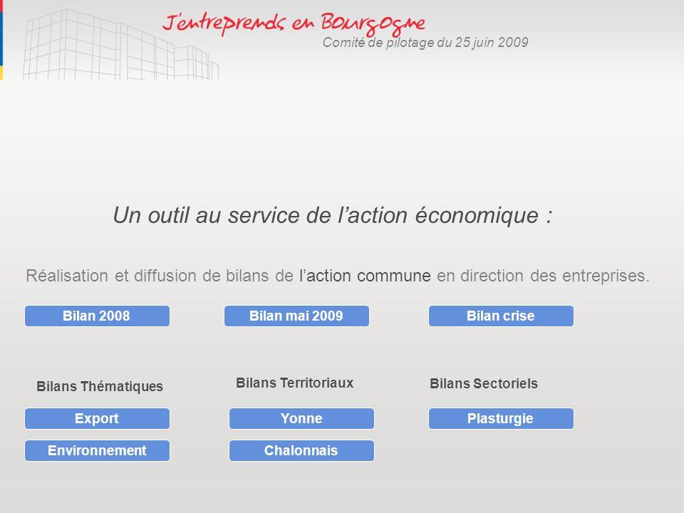 Un outil au service de laction économique : Réalisation et diffusion de bilans de laction commune en direction des entreprises. Bilan 2008Bilan mai 20