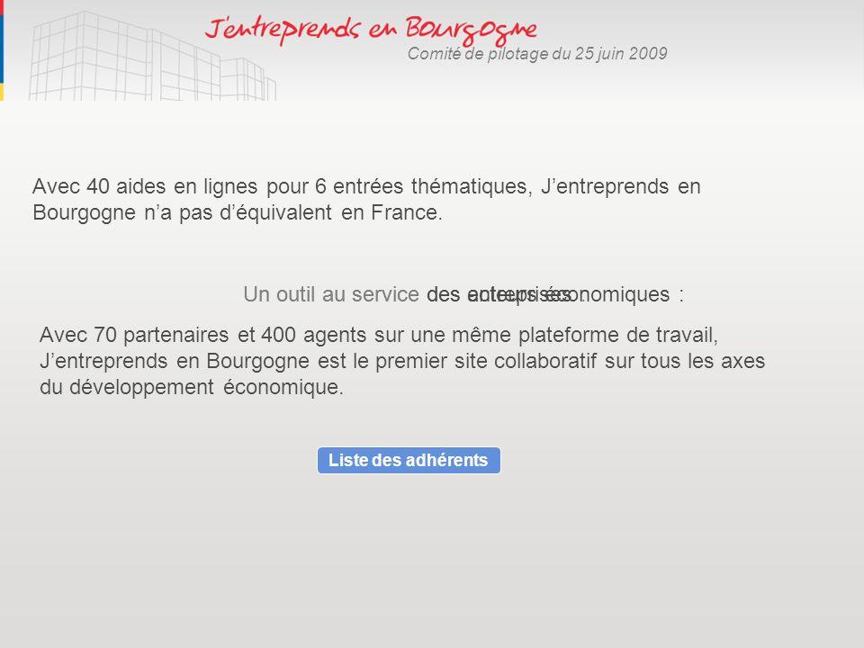 Comité de pilotage du 25 juin 2009 Avec 40 aides en lignes pour 6 entrées thématiques, Jentreprends en Bourgogne na pas déquivalent en France. Un outi