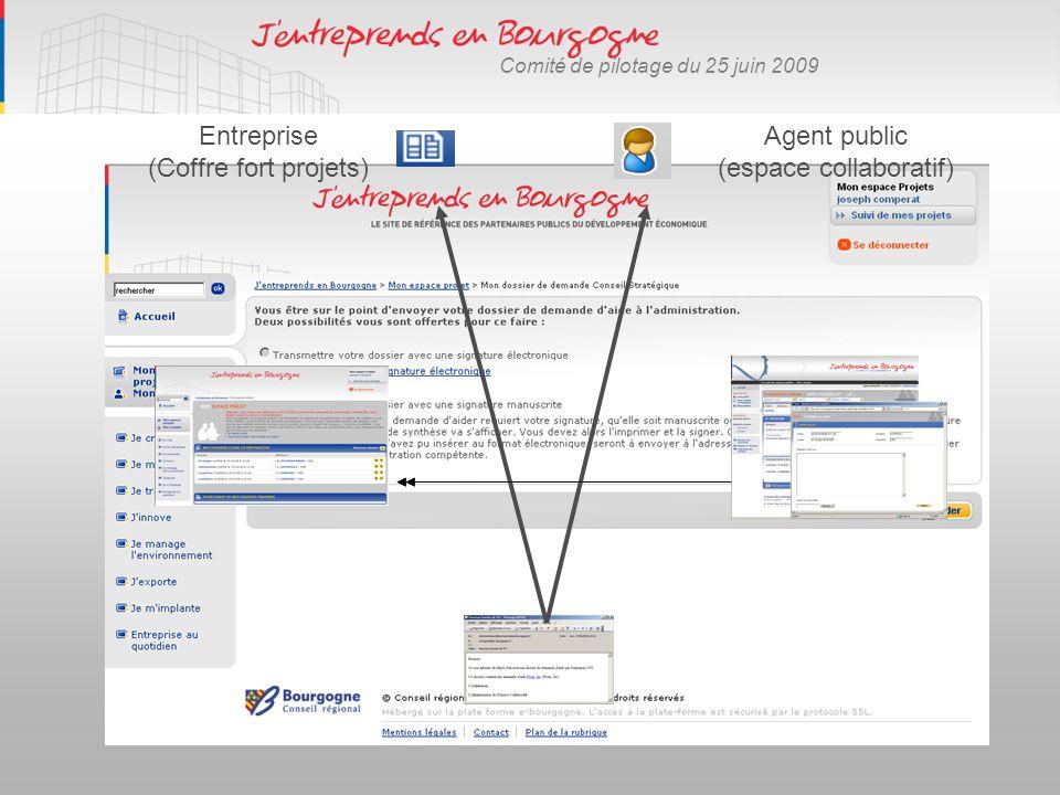 Comité de pilotage du 25 juin 2009 Agent public (espace collaboratif) Entreprise (Coffre fort projets)