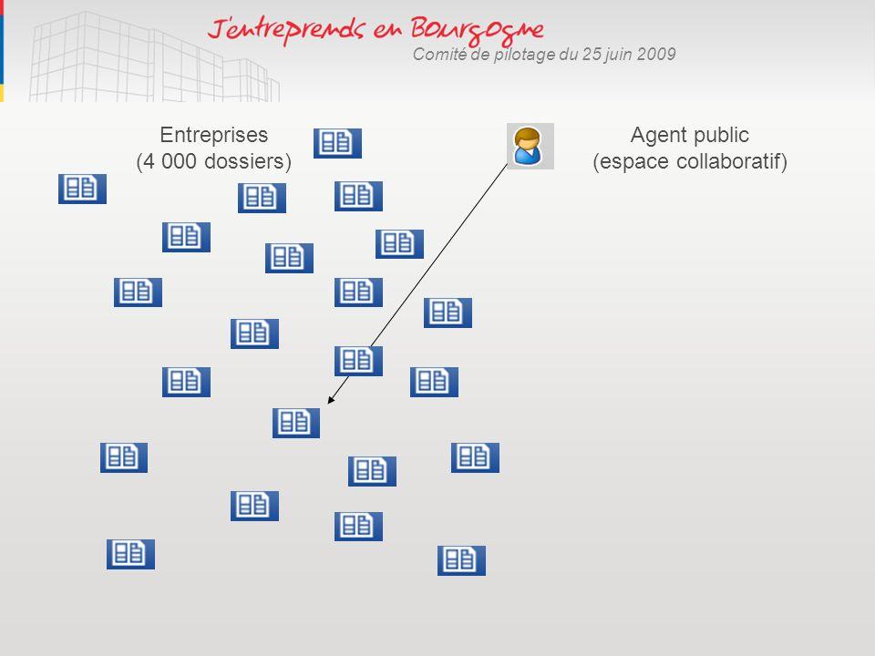 Comité de pilotage du 25 juin 2009 Agent public (espace collaboratif) Entreprises (4 000 dossiers)