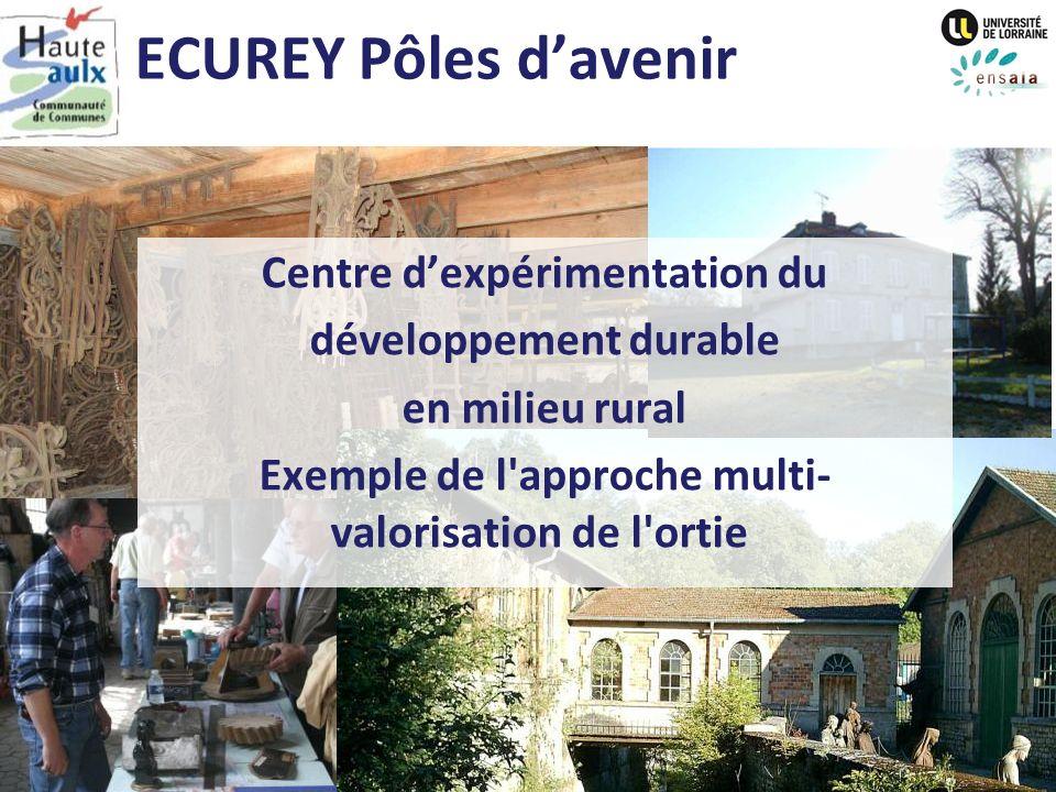 ECUREY Pôles davenir Centre dexpérimentation du développement durable en milieu rural Exemple de l'approche multi- valorisation de l'ortie