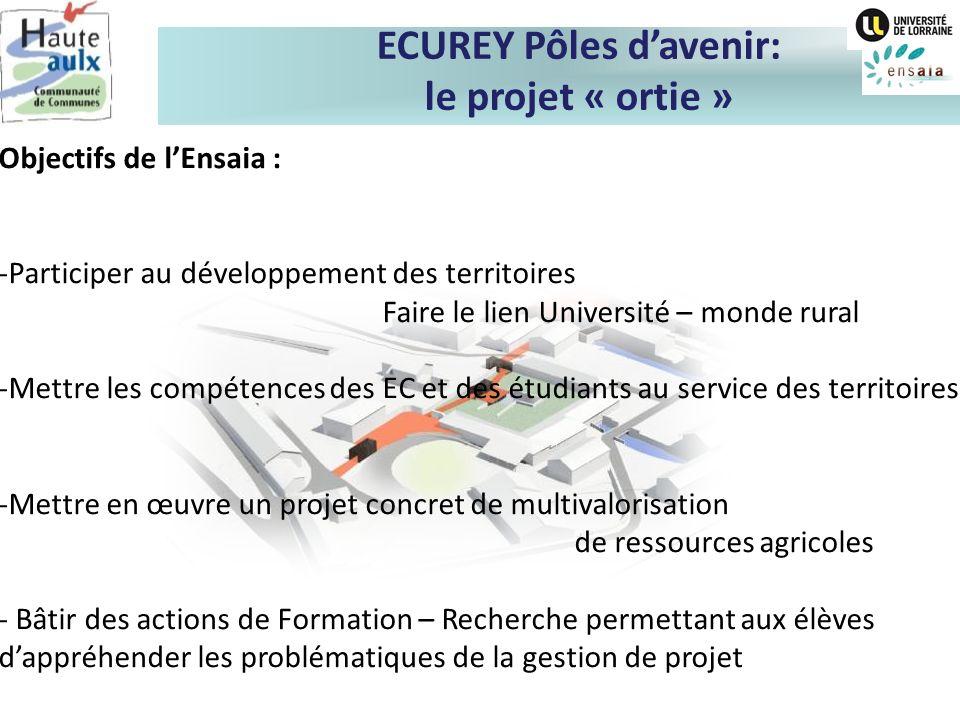 ECUREY Pôles davenir: le projet « ortie » Objectifs de lEnsaia : -Participer au développement des territoires Faire le lien Université – monde rural -