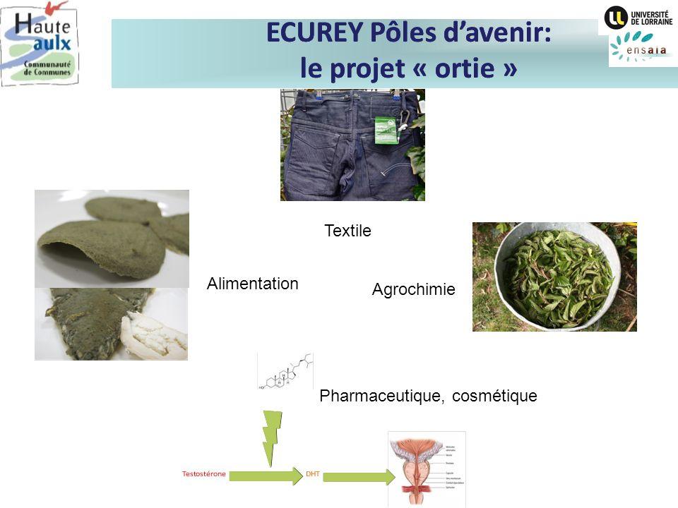ECUREY Pôles davenir: le projet « ortie » Textile Alimentation Agrochimie Pharmaceutique, cosmétique ECUREY Pôles davenir: le projet « ortie »