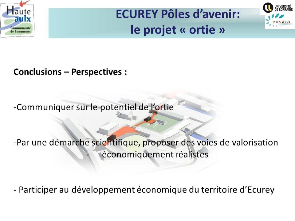 Conclusions – Perspectives : -Communiquer sur le potentiel de lortie -Par une démarche scientifique, proposer des voies de valorisation économiquement