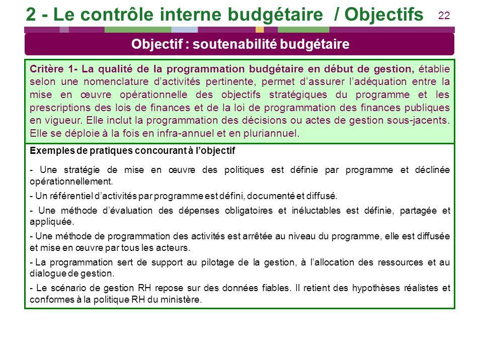 22 Exemples de pratiques concourant à lobjectif - Une stratégie de mise en œuvre des politiques est définie par programme et déclinée opérationnelleme