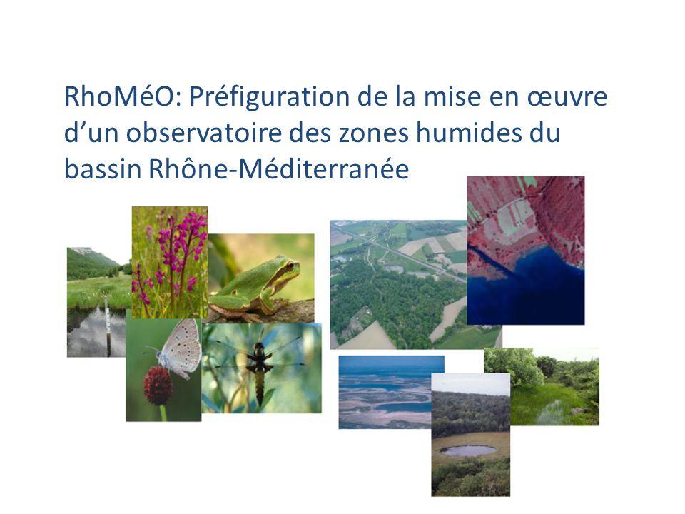 RhoMéO: Préfiguration de la mise en œuvre dun observatoire des zones humides du bassin Rhône-Méditerranée