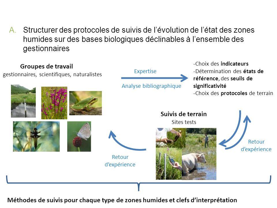 A.Structurer des protocoles de suivis de lévolution de létat des zones humides sur des bases biologiques déclinables à lensemble des gestionnaires 203 sites