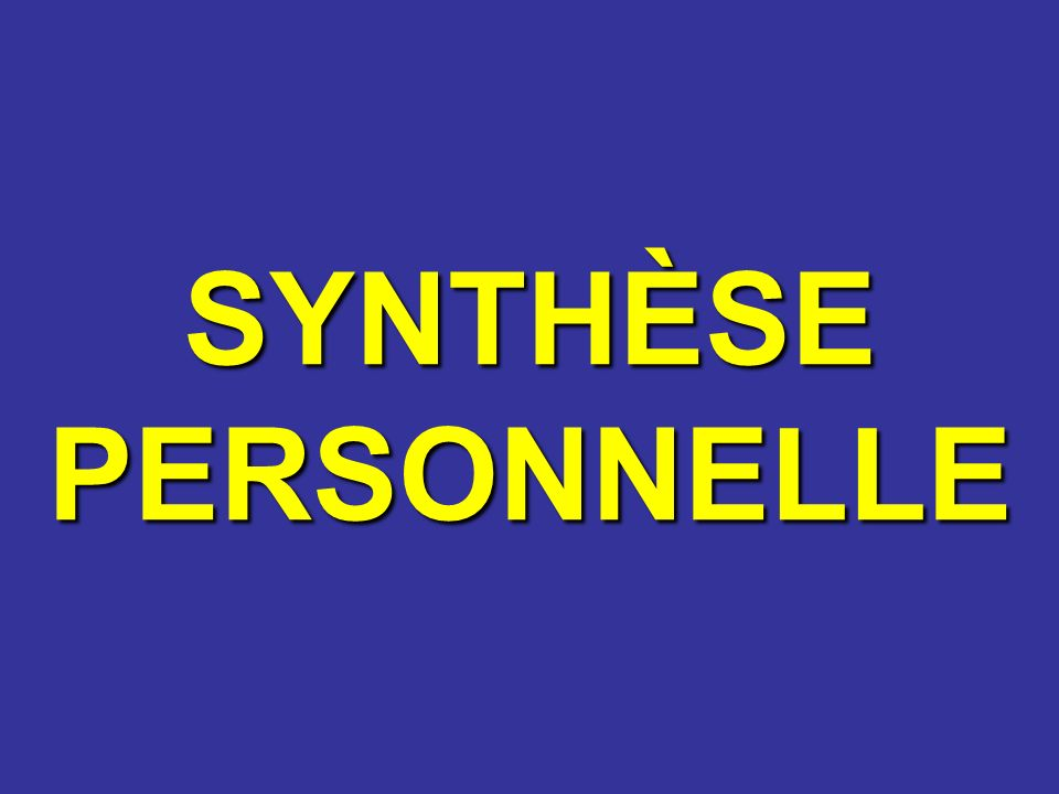 SYNTHÈSE PERSONNELLE