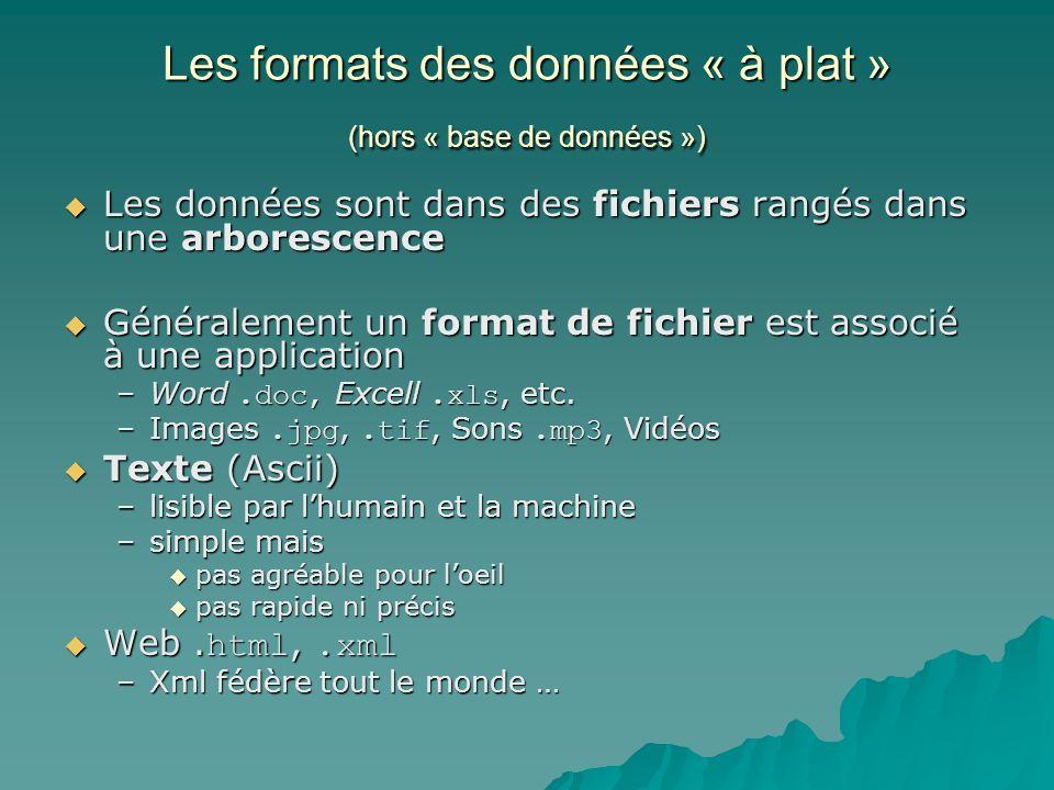 Les formats des données « à plat » (hors « base de données ») Les données sont dans des fichiers rangés dans une arborescence Les données sont dans de