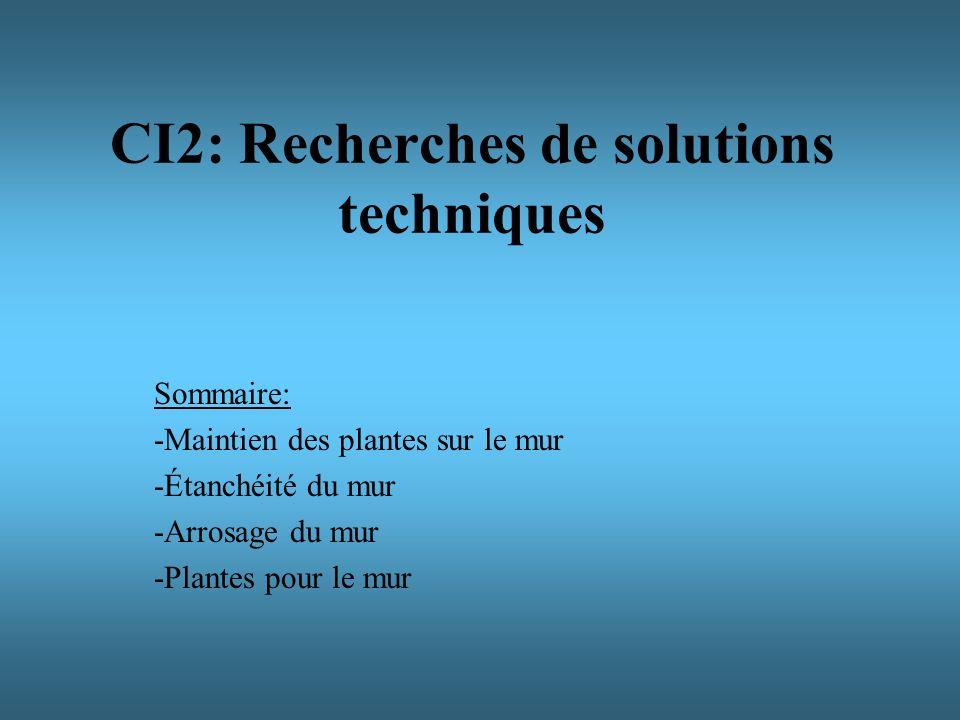 CI2: Recherches de solutions techniques Sommaire: -Maintien des plantes sur le mur -Étanchéité du mur -Arrosage du mur -Plantes pour le mur